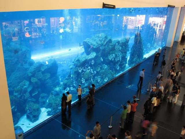 Аквариум у Дубай Молл