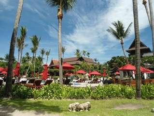 отель Amari Palm Reef Resort 4*