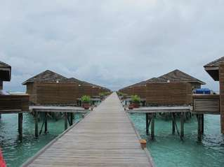 отель Meeru Island Resort 4*