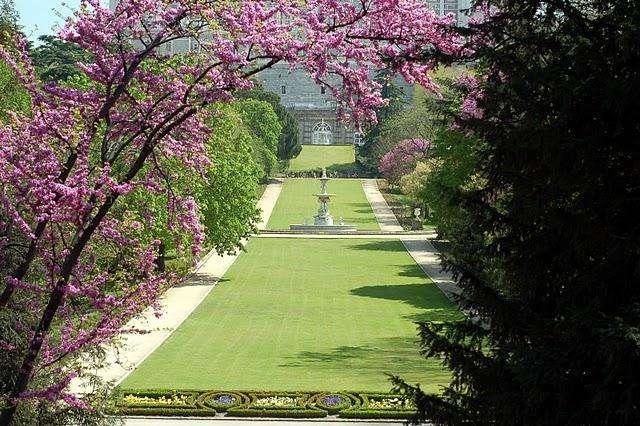 Сад Королевского дворца