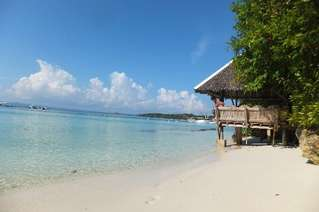отель Panglao Island Nature Resort 4*