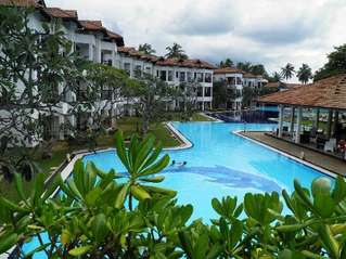 отель Club Hotel Dolphin 3*
