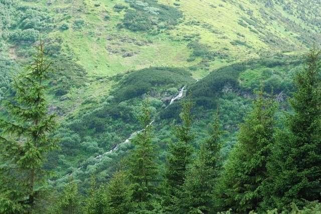 Исток реки Прут