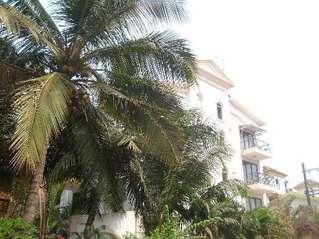 отель Rahi Coral 3*