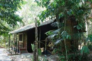 отель Amazon Ecopark Lodge 3*