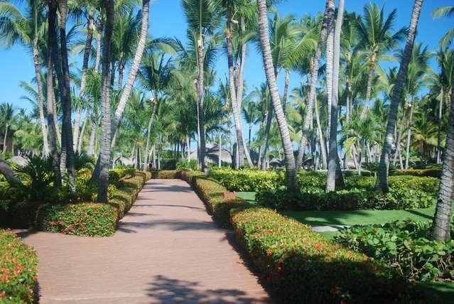 Территория между отелями Доминикана и Пунта Кана