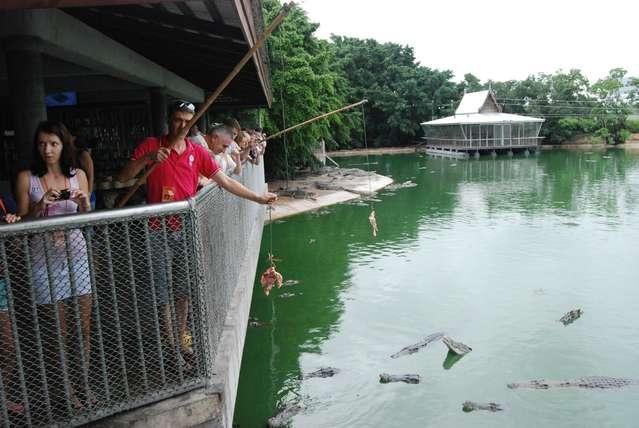 Крокодил клюет? На что ловите?