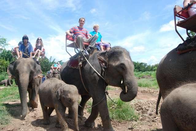 Что за экскурсии без катания на слонах?