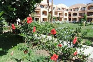 отель Aladdin Beach Resort 4*