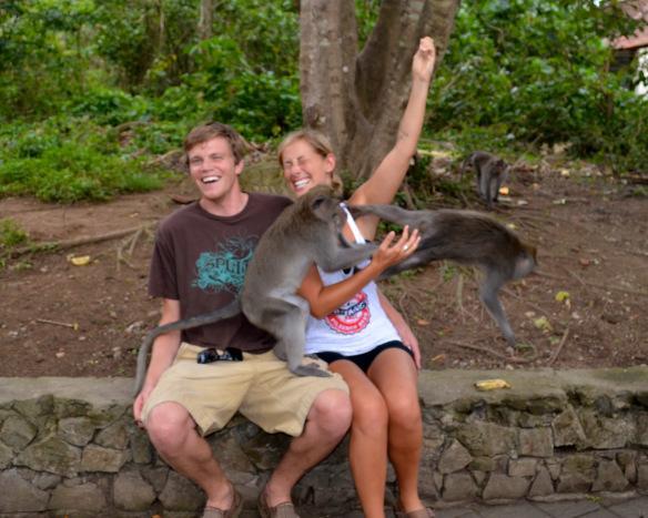 Очень наглые обезьянки :)