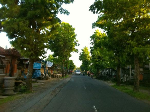 Деревушка вдоль дороги.