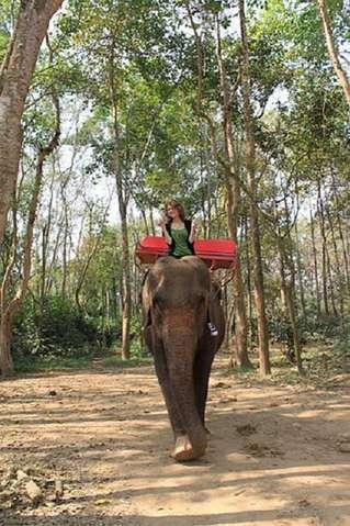 На слонах по джунглям Ко Чанга