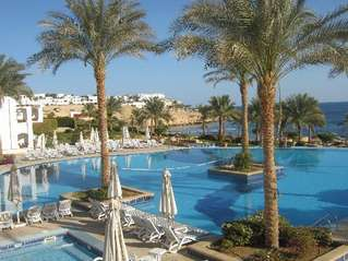 отель Continental Garden Reef Resort 5*
