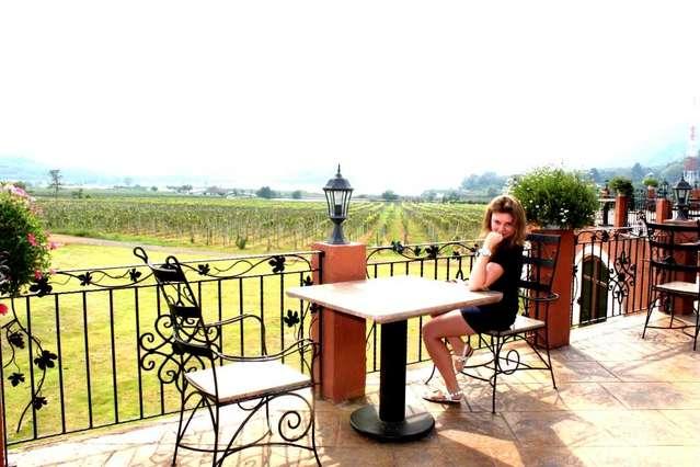 Вид с террасы на виноградники и озеро