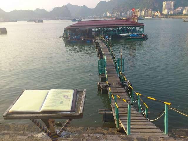 плавучий ресторан с мостиком, есть такие же без моста.