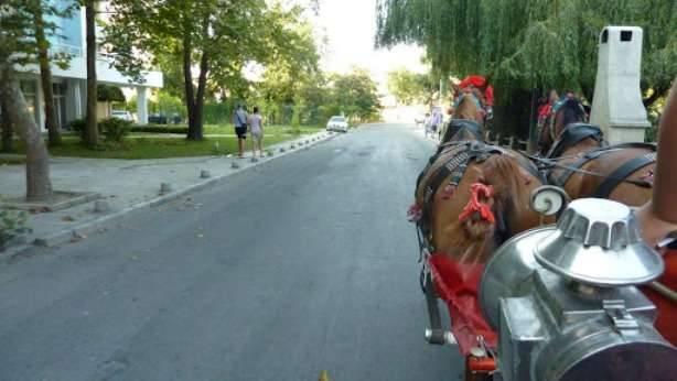 Фото улицы из прогулочной кареты
