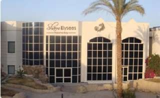 отель Sharm Elysees 3*