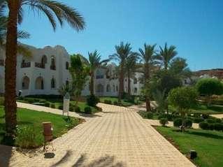 отель Sonesta Beach Resort & Casino 5*