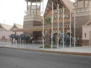 отель Jungle Aqua Park 4*