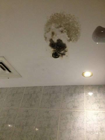 Так выглядит  плесень на потолке в ванной  в четыехзвездочном отеле Делмон