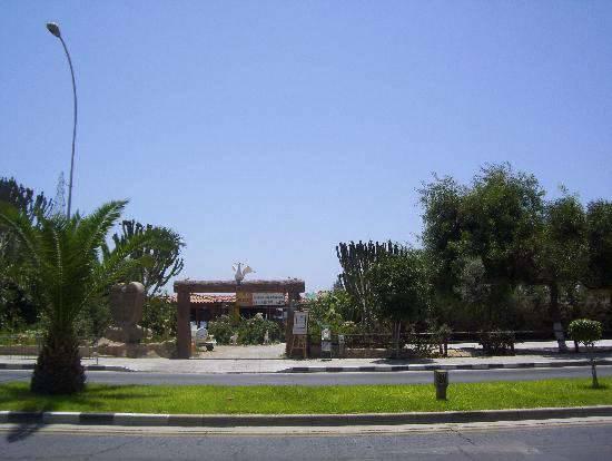 Отель atlantica gardens 3 кипр лимассол отзывы