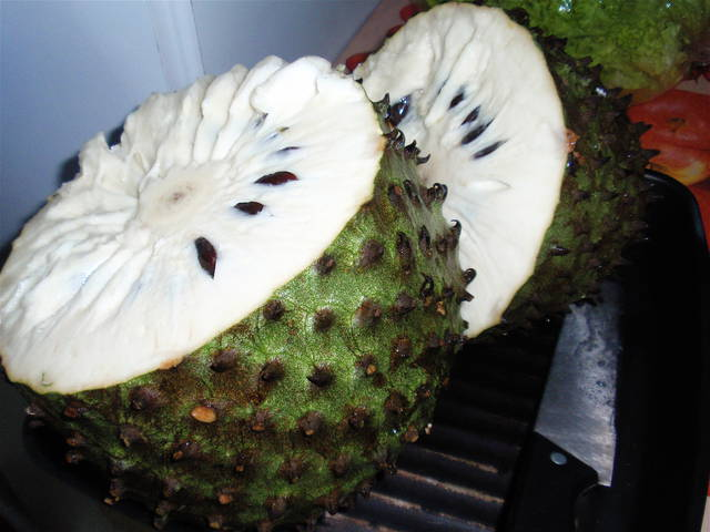 soursop Annona muricata seeds soursop blooms all year long in tropical regions the plant will take 3 to 4 years before producing  20 x soursop seeds features: tropical plant, fruit seeds, easy to grow.