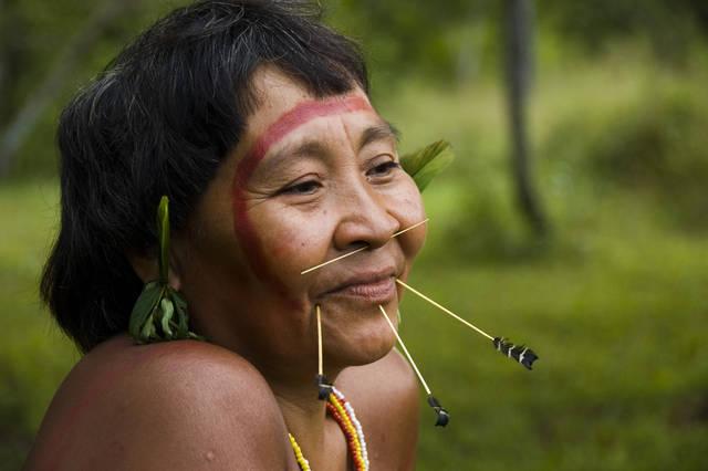 yanomamo indians essay