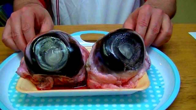 Картинки по запросу Глазные яблоки тунца.