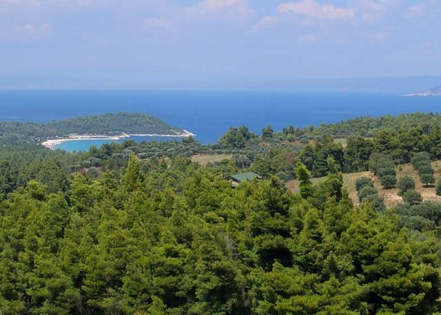 Майские каникулы на полуострове Кассандра  Рассказы о Халкидики