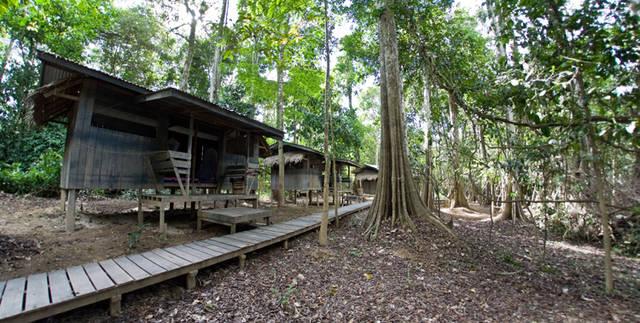 Экстремальный отдых на о. Борнео в сентябре.  Рассказы о Борнео