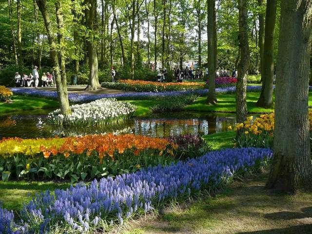Парк Койкенхоф, Нидерланды