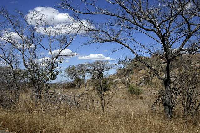 Национальный парк Крюгер, ЮАР